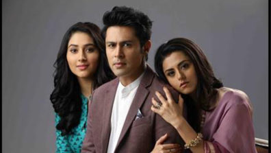 Aditya to divorce Nisha in Zee TV's Woh Apna Sa