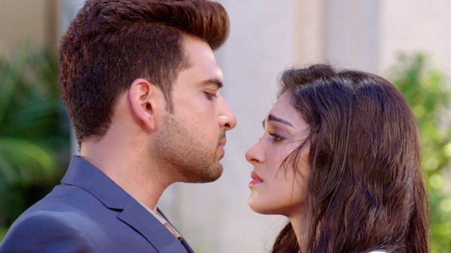 Vikrant to hire Palak to seek revenge from the Noons in Sony TV's Dil Hi Toh Hai