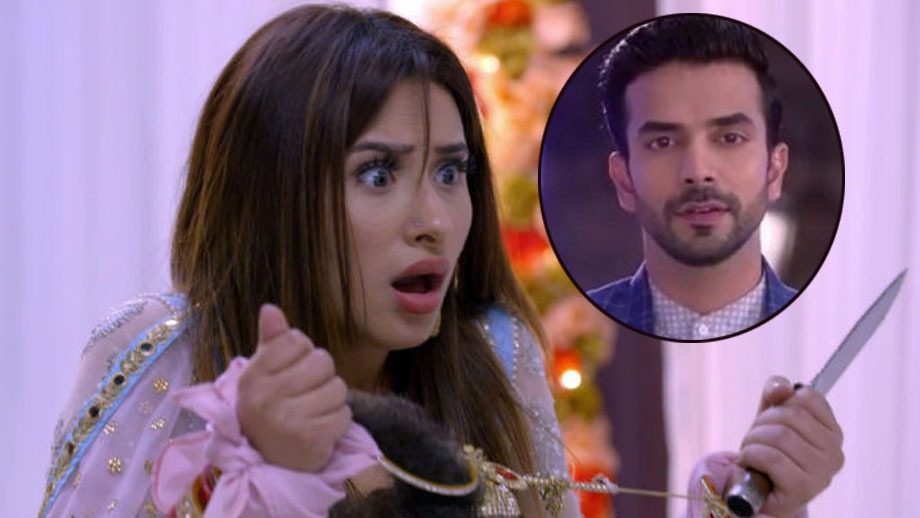 Kundali Bhagya: Monisha to attack Rishabh with a knife