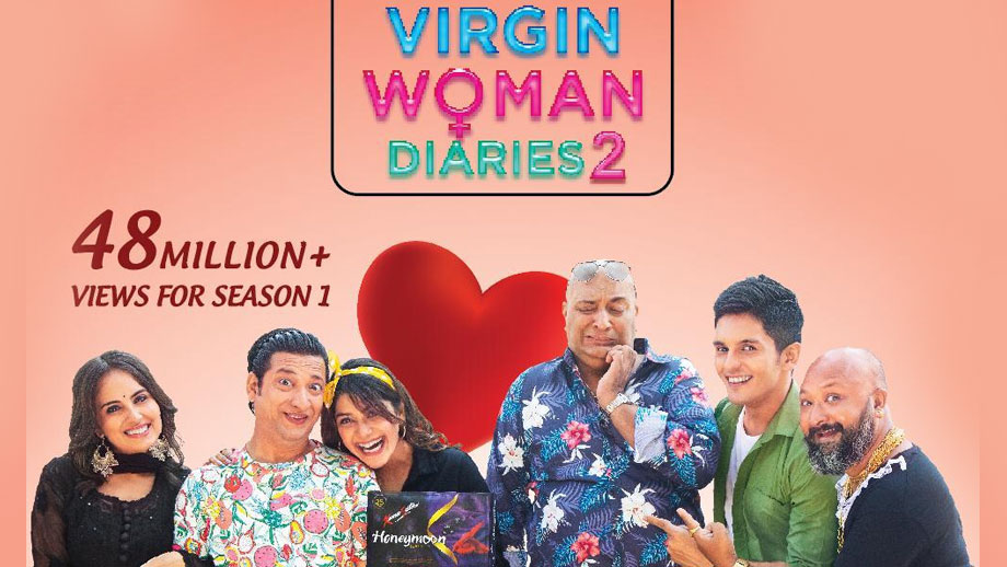 Review of Virgin Woman Diaries: Fun romance of errors, but fails to touch core concept