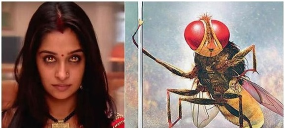 Weird, Insane and Simply Stupid: What the hell happened to Indian Television? 8