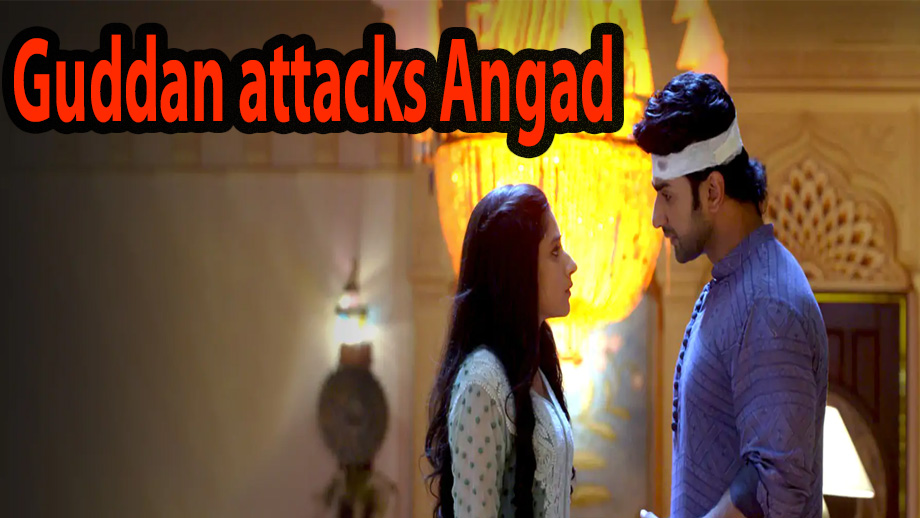 Guddan Tumse Na Ho Payega 17 April 2019 Written Update Full Episode: Angry Guddan attacks Angad