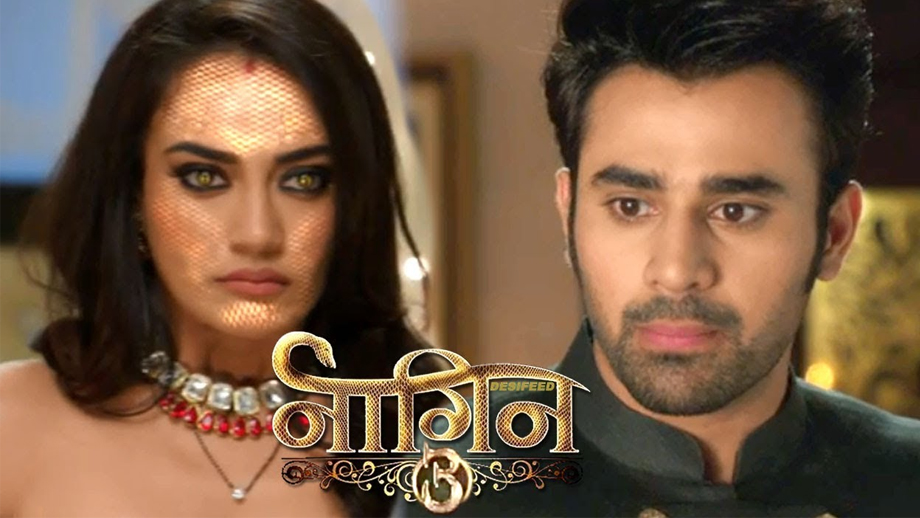Naagin 3 21 April 2019 Written Update Full Episode : Mahir is attacked 1