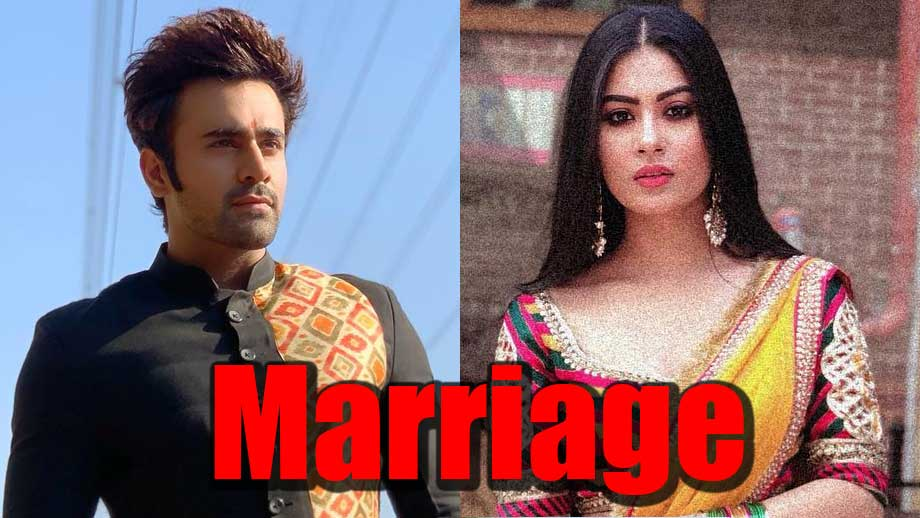 Naagin 3: Mihir and Tanya to get married
