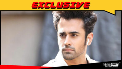 Naagin fame Pearl V Puri to play the male lead in Kasam Tere Pyaar Ki 2?