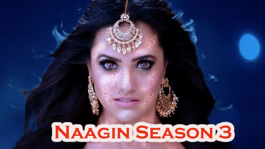 Naagin Season 3 14th April 2019 Written Episode Update: Tamsi gets violent