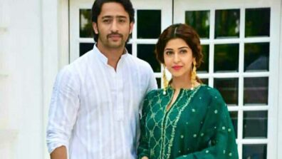 Shaheer Sheikh and Sonarika Bhadoria pen down a cute post for each other! 2
