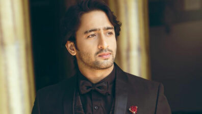 Shaheer Sheikh's drool worthy pictures to make your day special!