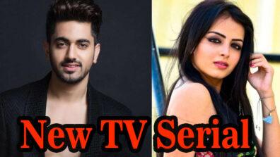 Shrenu Parikh & Zain Imam's new TV serial Sarvagun Sampanna has us extremly excited!