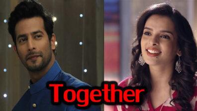 Tujhse Hai Raabta 29 April 2019 Written Update Full Episode: Malhar and Sampada have to live together