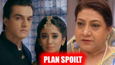 Yeh Rishta Kya Kehlata Hai: Dadi to spoil Kartik and Naira's expose plan