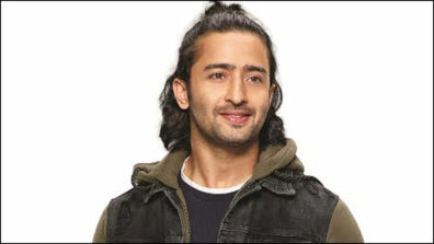 Friendship is often a starting point for getting two people close: Shaheer Sheikh