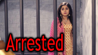 Guddan Tumse Na Ho Payega 17 May 2019 Written Update Full Episode: Guddan getting arrested?