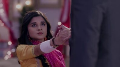 Guddan Tumse Na Ho Payega 2 May 2019 Written Update Full Episode: Guddan slips on purpose