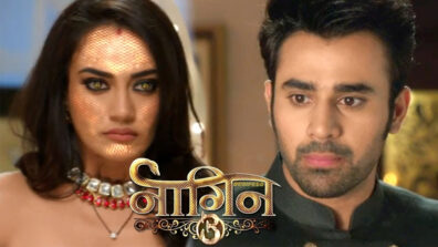 Naagin 3: Season Finale excitement begins 9