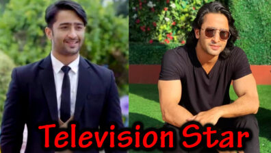 Shaheer Sheikh: The Television Star on whom audience is going gaga! 2