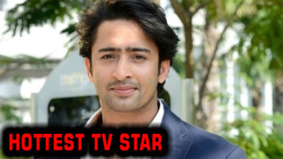 These drool worthy pictures of Shaheer Sheikh prove he is the hottest TV star 3