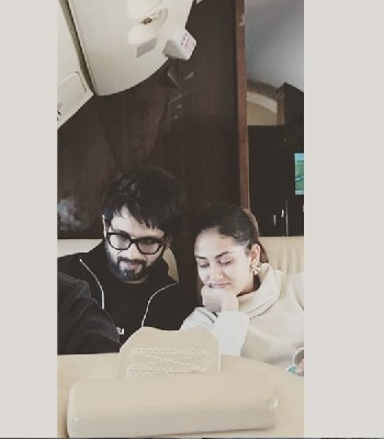 All the cute moments of Shahid Kapoor and Mira Rajput