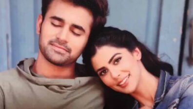 Bepanah Pyaarr: Raghbir to be troubled by media over Sukanya's case