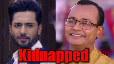Guddan Tumse Na Ho Payega: Parv to kidnap Guddan's father Bushan