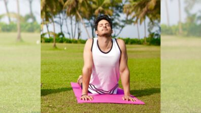 Mohit Malhotra believes Yoga is important for physical and emotional fitness