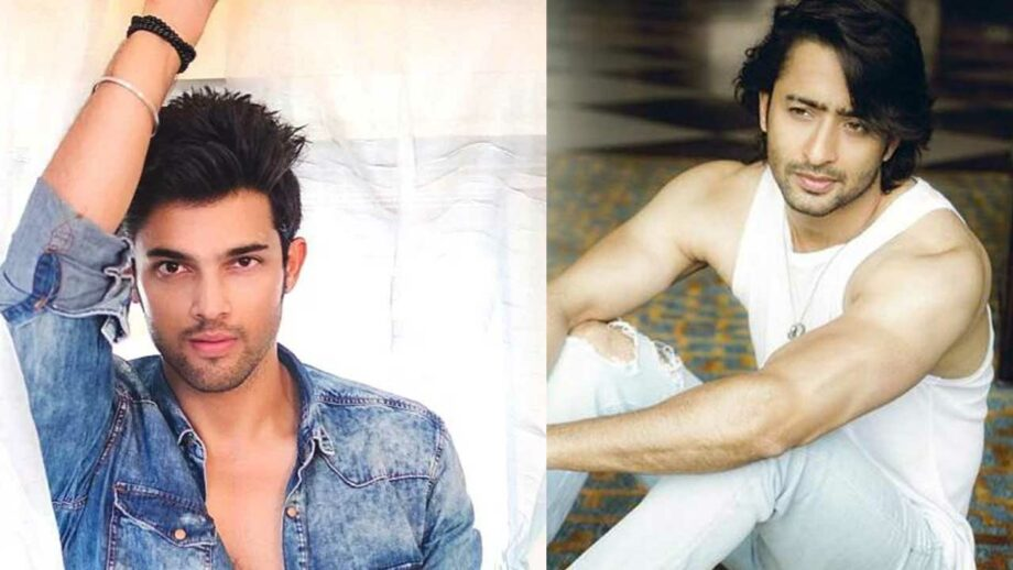 Parth Samthaan or Shaheer Sheikh: Hot bod of TV