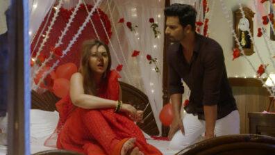 Tujhse Hai Raabta: Kalyani's attempt to romance Malhar goes waste