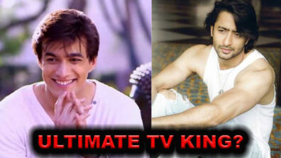 Mohsin Khan vs Shaheer Sheikh: Who is the ultimate TV King?