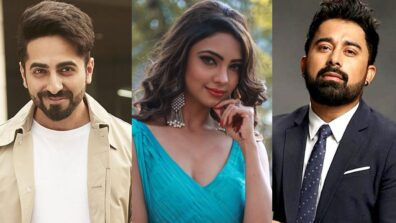 MTV Roadies contestants who have made big