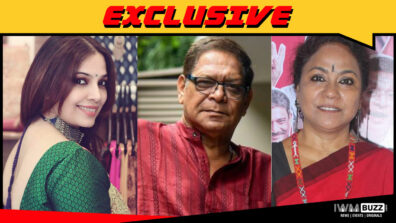 Shilpa Tulaskar, Mohan Joshi and Seema Biswas in Rajshri Production show for Star Plus