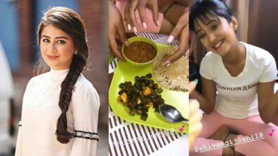 Aditi Bhatia enjoys a dinner date at Shivangi Joshi's house 1