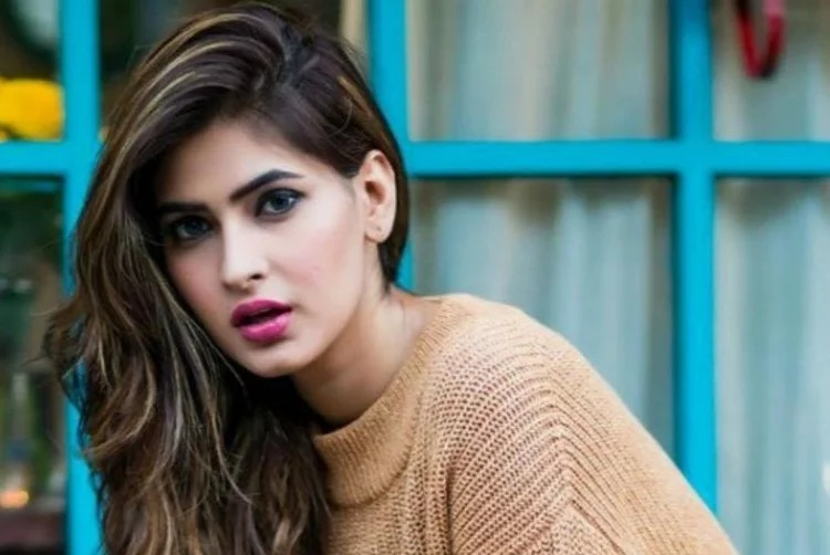 Everything you should know about Viu Sumer Singh Diaries star Karishma Sharma