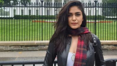 From TV to Bollywood: Mrunal Thakur's way to stardom