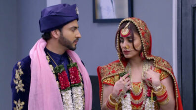 Kundali Bhagya: Karan's master plan to marry Preeta