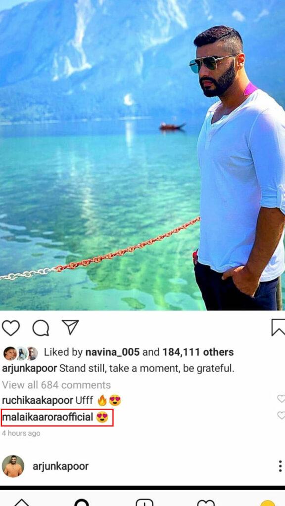 Malaika Arora and Arjun Kapoor's social media PDA 1