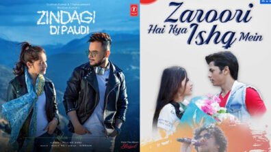 Zaroori Hai Kya vs Zindagi Di Paudi: Jannat Zubair's Best Music Video