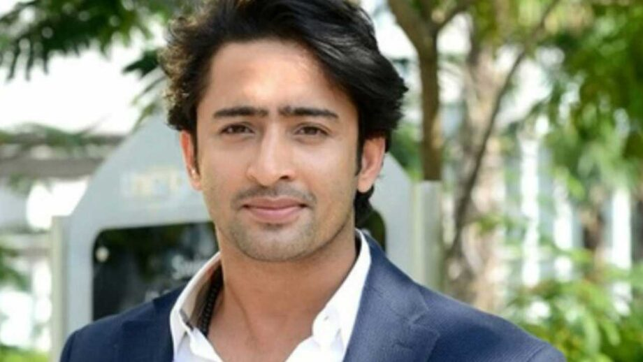 A die-hard fan of Shaheer Sheikh? Take a test!