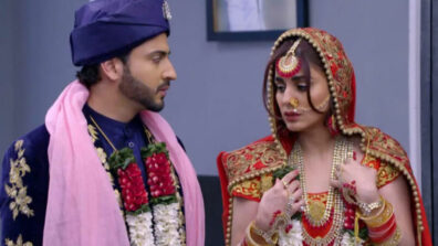 Kundali Bhagya: Happy times for Karan and Preeta post wedding