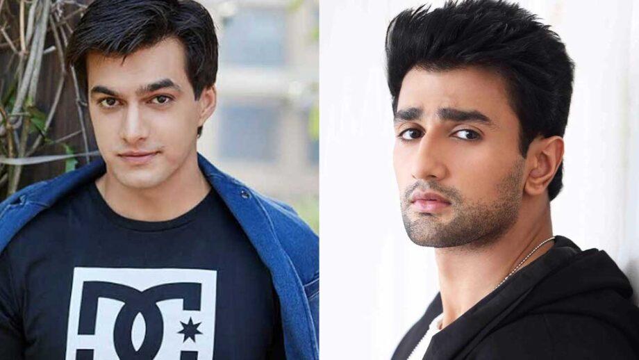 Mohsin Khan vs Nishant Malkhani: The better actor