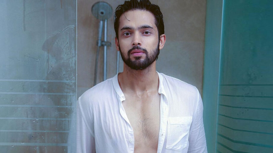 Parth Samthaan is breaking the internet with this latest picture