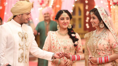 Patiala Babes: Hanuman and Babita to tie the knot 9