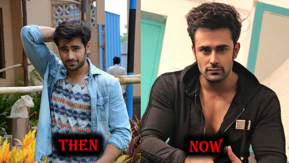 Then vs Now: THIS is how Pearl V Puri looked before riding on top 1