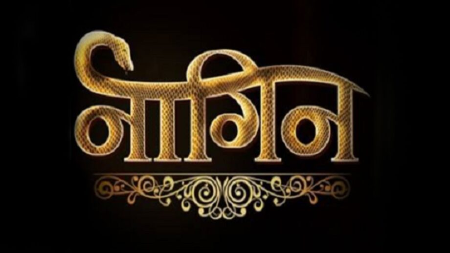 Are you a die hard fan of Naagin? Take a test