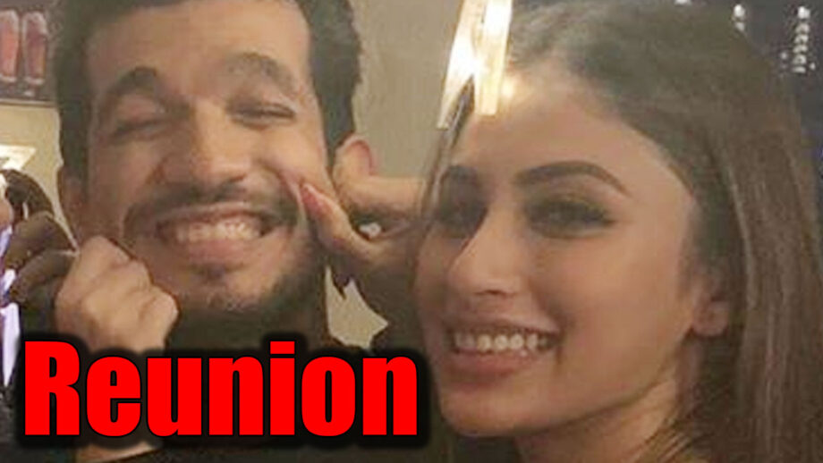 Naagin couple Arjun Bijlani and Mouni Roy reunite
