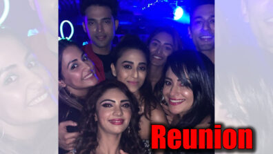 Erica Fernandes, Parth Samthaan and Hina Khan reunite for Pooja Banerjee's birthday