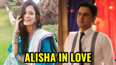 Guddan Tumse Na Ho Payega: Alisha to fall in love with Akshat's friend Vikrant