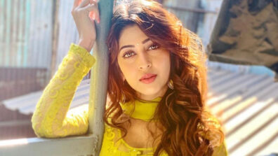 Sonarika Bhadoria exudes class in her Indian wear 11