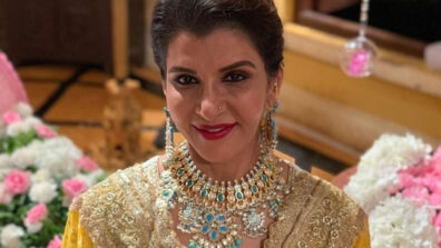 Choti Sarrdaarni's powerful story and team set it apart from other shows: Anita Raj