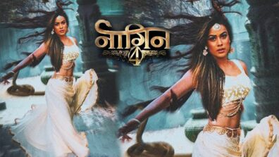 Reasons why we are excited to watch Nia Sharma and Jasmine Bhasin in Naagin 4