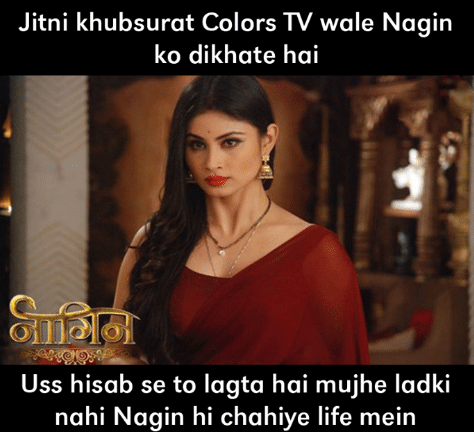 10 hilarious memes on 'Naagin' that never get old! 17